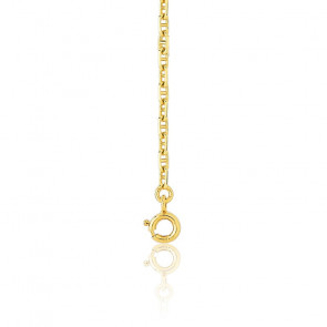 Bracelet maille marine, 20 cm, Or jaune 18K massif