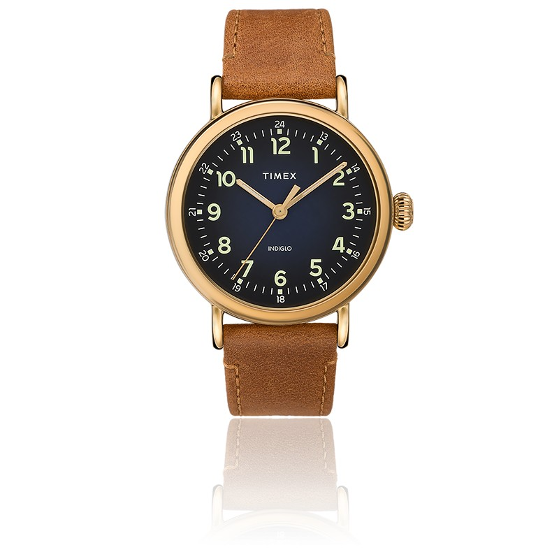 Montre Standard Leather Strap 40mm TW2T20000