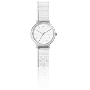 Montre Aaren Transparent SKW2858