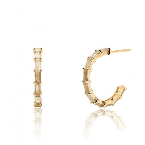 Boucles d'oreilles Pistil dorées AR01-322-U