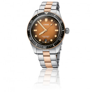 Montre Divers Sixty-Five 01 733 7707 4356-07 8 20 17
