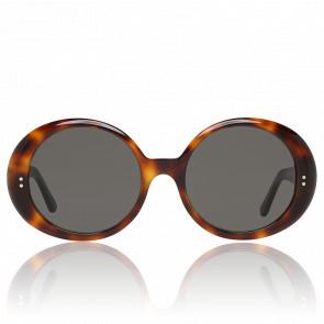 Lunettes de soleil ovales - écaille Havana - CL-400651-53A